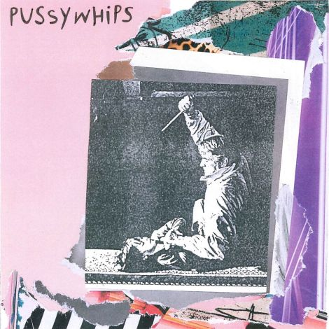 Pussywhips